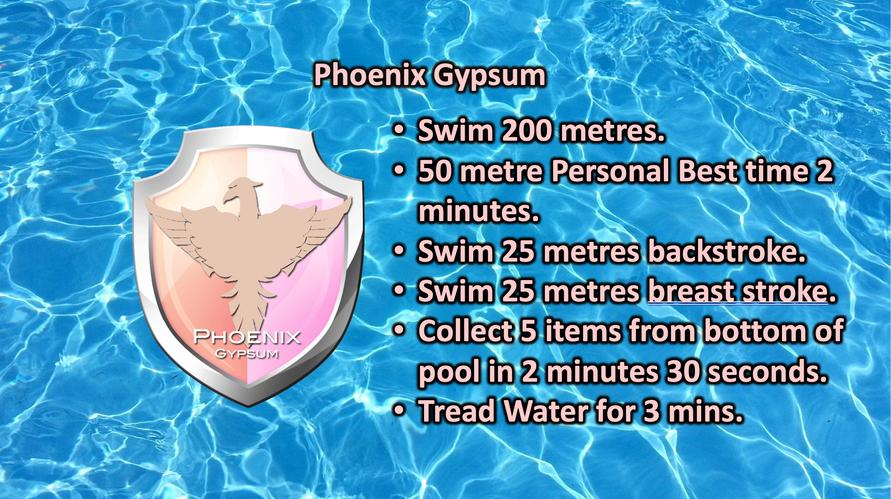 01 Phoenix Gypsum.png