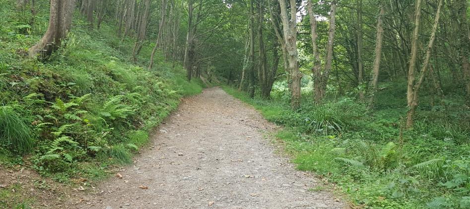 Trinity Trail (45).jpg