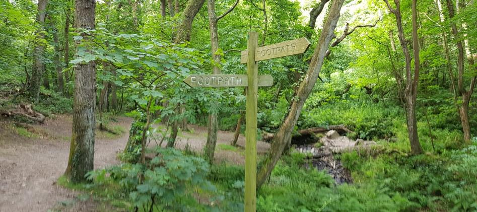 Trinity Trail (48).jpg