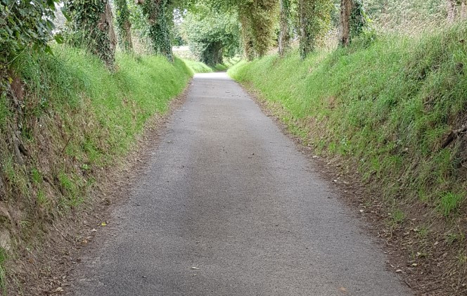 Trinity Trail (149).jpg