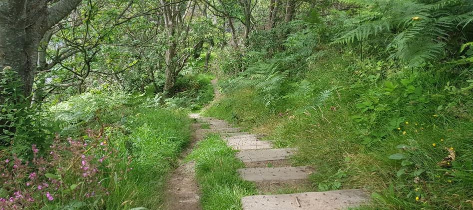 Trinity Trail (36).jpg