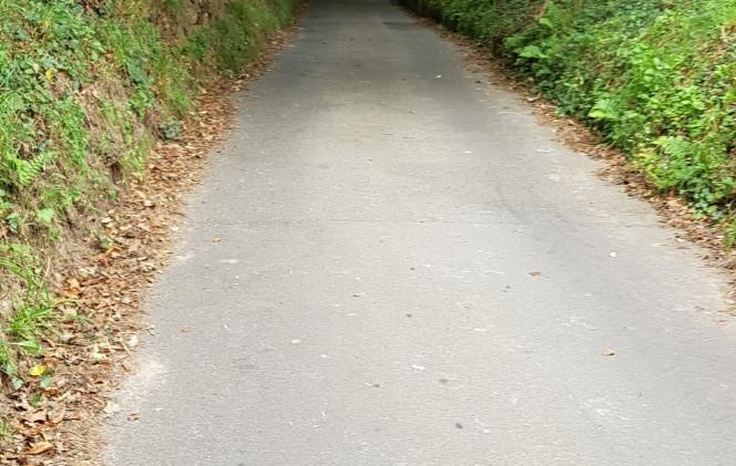 Trinity Trail (144).jpg
