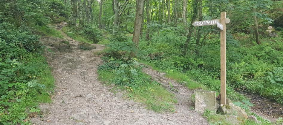 Trinity Trail (46).jpg