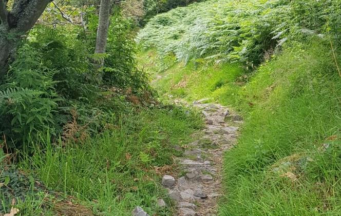 Trinity Trail (08).jpg