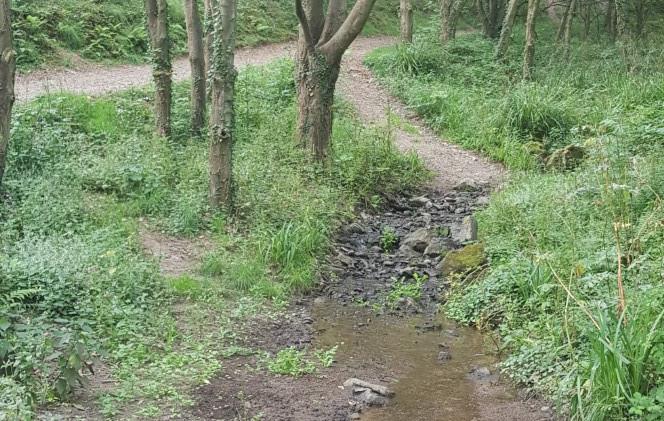 Trinity Trail (44).jpg