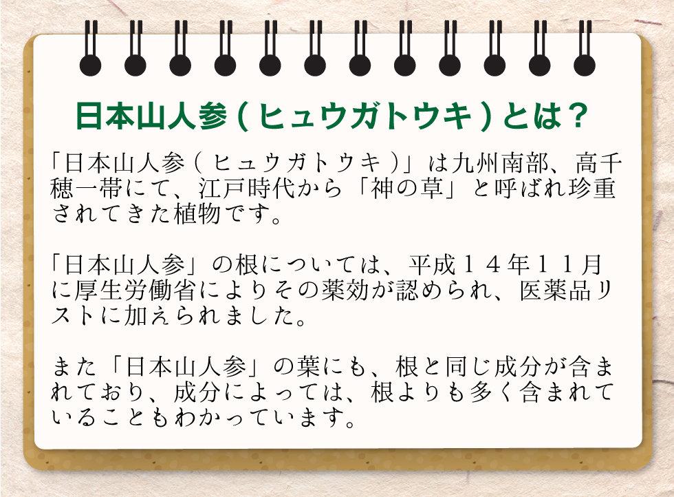 yamaninjin_lpスライス_03.jpg