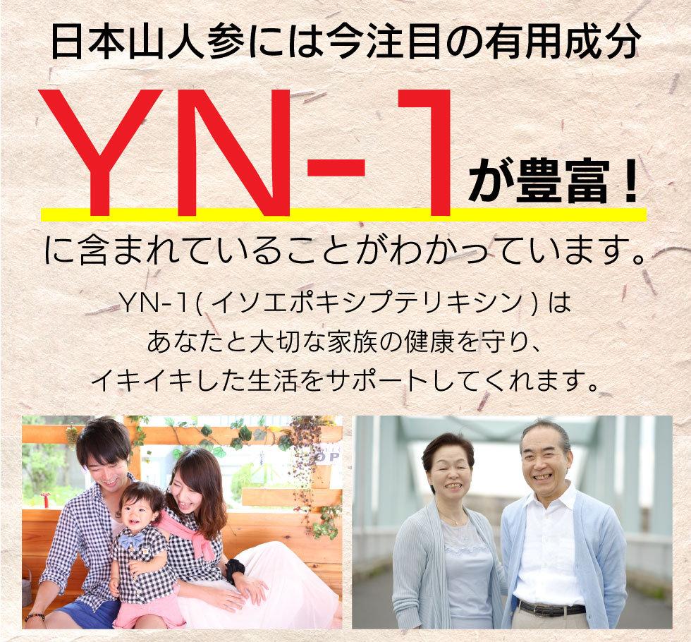 yamaninjin_lpスライス_05.jpg
