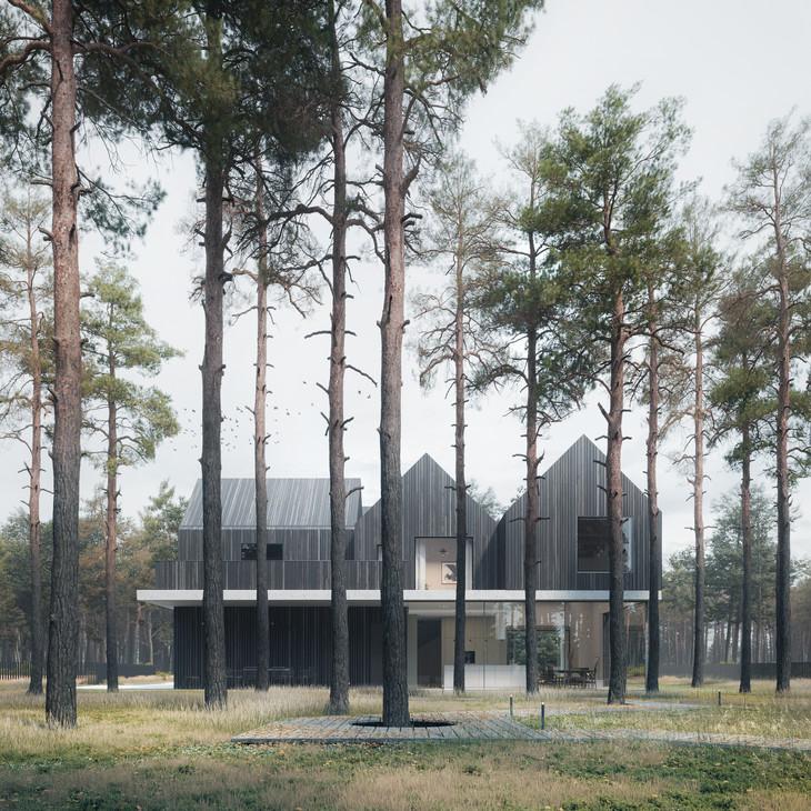 89STOPNI - A HOUSE NEAR WARSAW