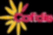 Logotipo cofidis
