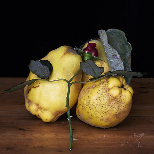 The Three Quinces, Red Rose