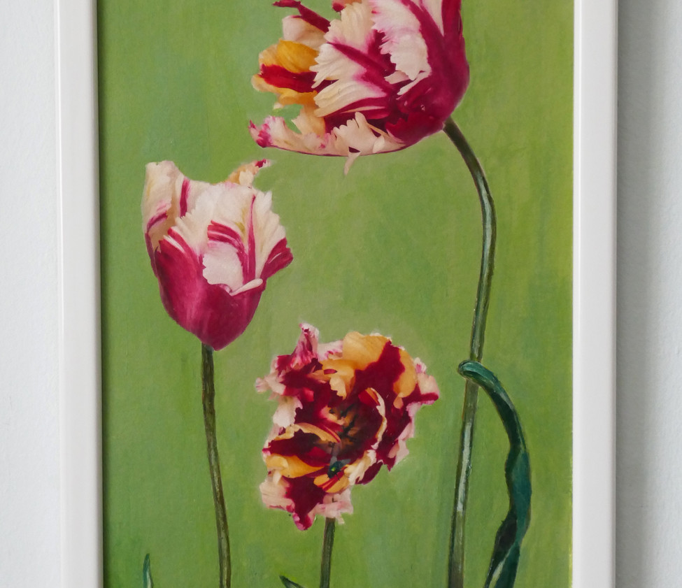 Three Tulips with an ant