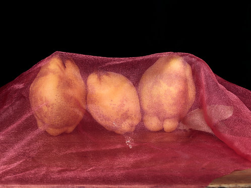 The Three Quinces, Veiled