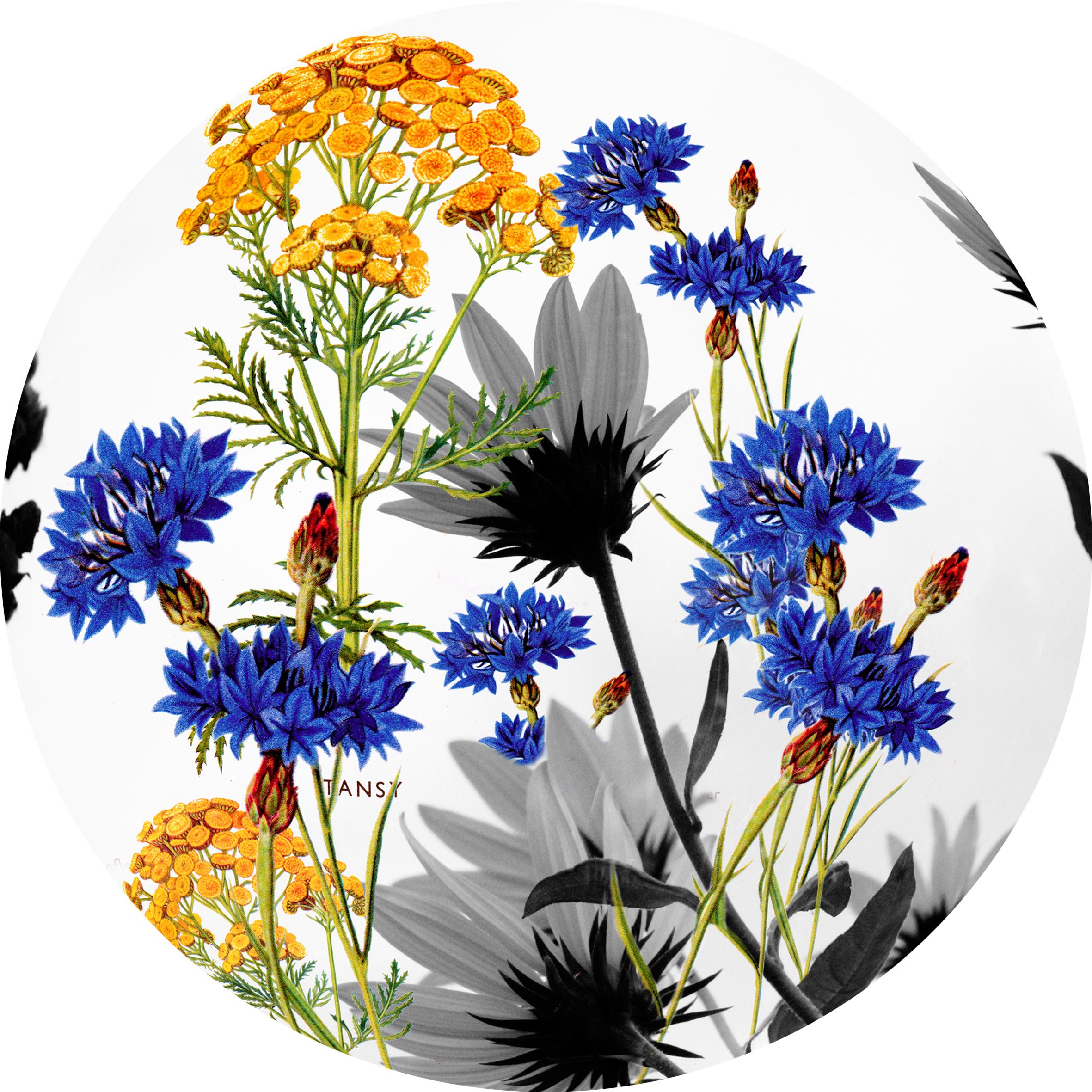 Floral Sphere 5