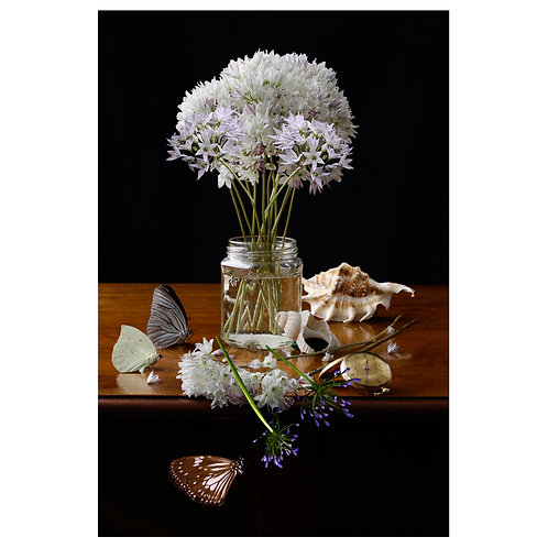 A Vase of Flowers - Brodiaea and Agapanthus