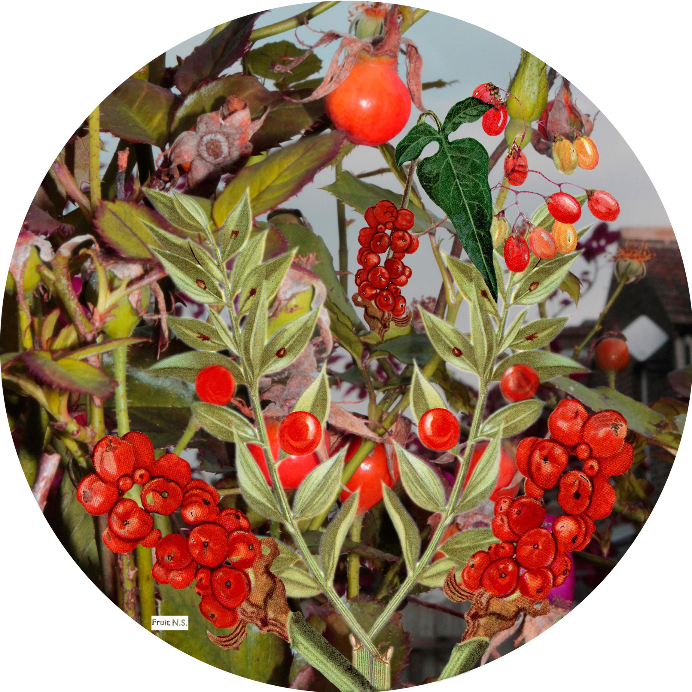 Floral Sphere 4