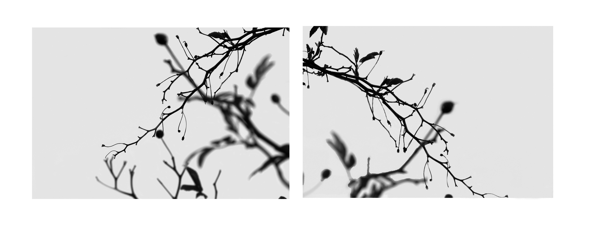 Notes Diptych