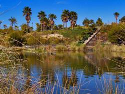 Parque botánico José Celestino Mutis