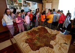 Centro de Interpretación La Rioja