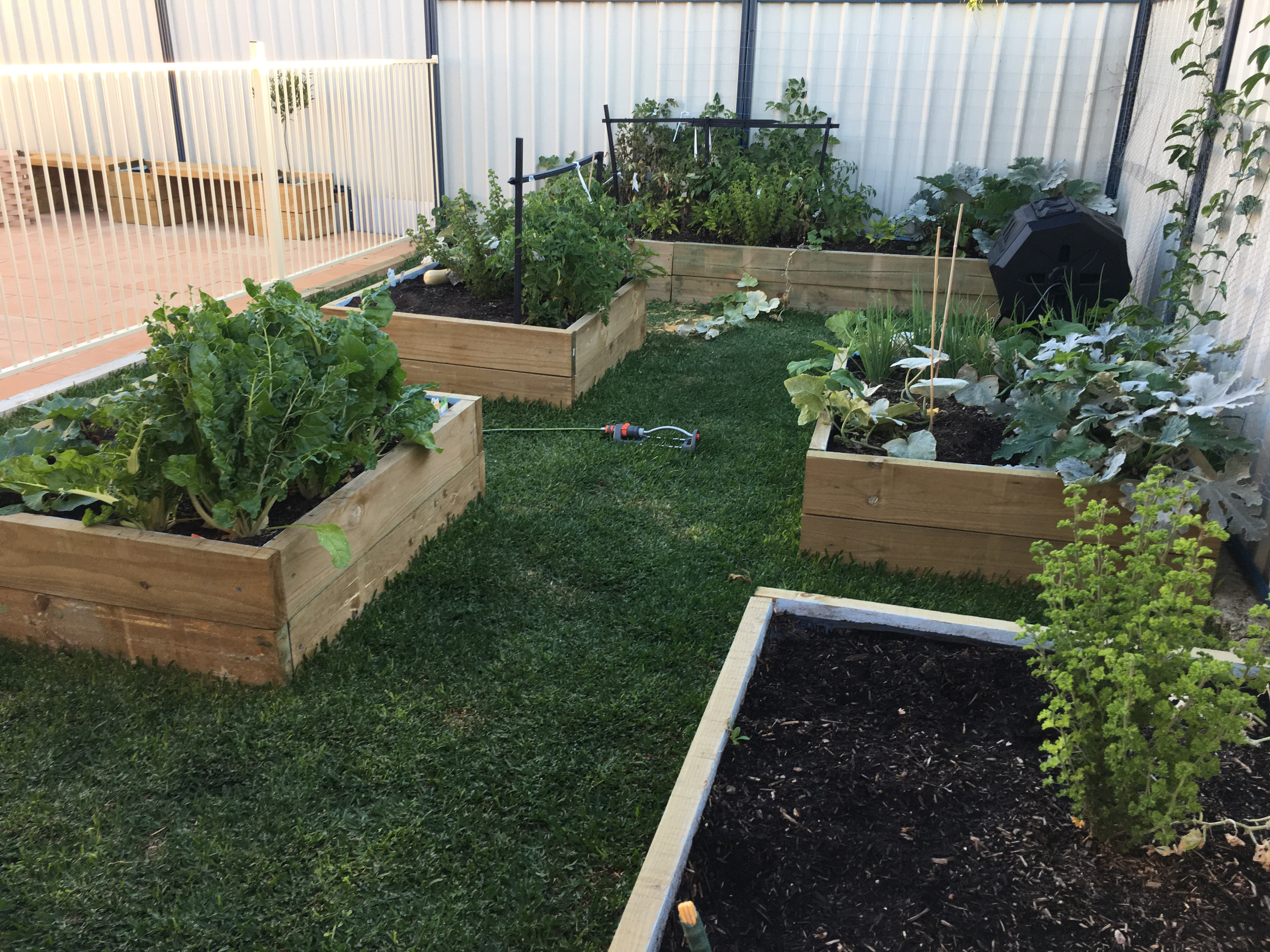 Customized raised veggie patches