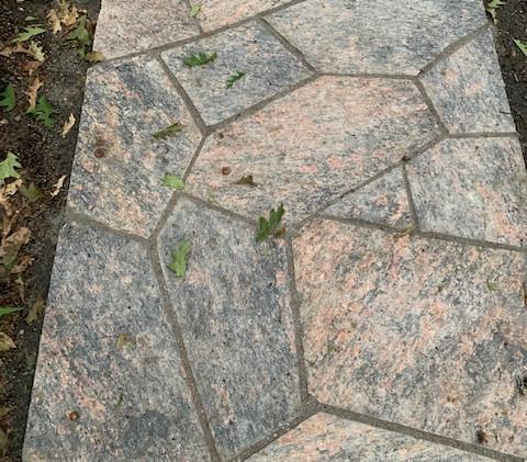 Muskoka Granite WalkwayIMG_0985.jpg