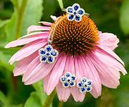 1494x1238_Flower_PD10233_ER10133_RG10246