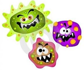 Copy of germs.jpg