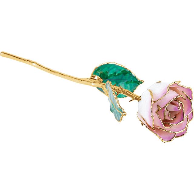 Pink Valentines Rose