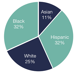 Obesity by Ethnicity.png