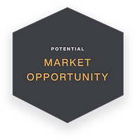 Market Opportunity.png