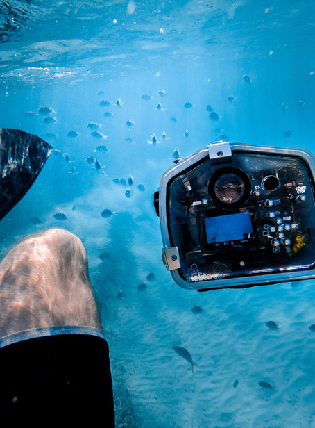 How much should a videographer cost?
