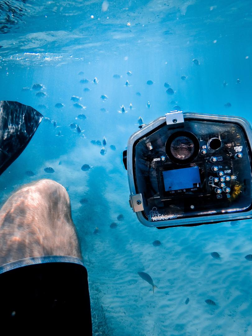ช่างภาพใต้น้ำ