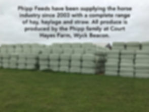 Phipp Feeds have bee supplying the horse industry since 2003 with a complete range of hay, haylage and straw. All produce is produced by the Phipp family at Court Hayes Farm, Wyck Beacon.