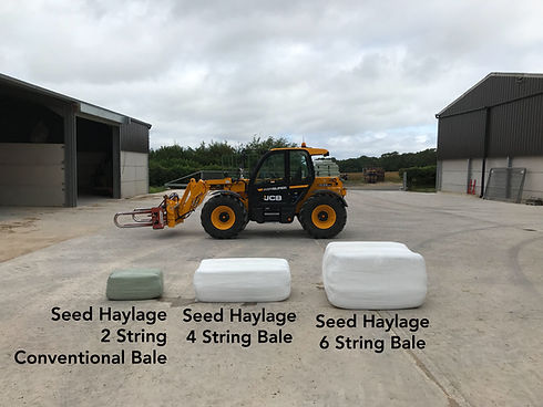 Seed Haylage 2 String Conventional Bale Seed Haylage 4 String Bale Seed Haylage 6 String Bale