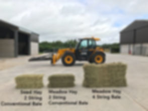 Seed Hay 2 String Conventional Bale Meadow Hay 2 String Conventional Bale Meadow Hay 4 String Bale