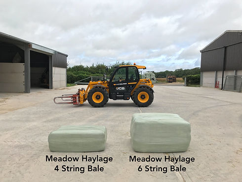 Meadow Haylage 4 String Bale Meadow Haylage 6 String Bale