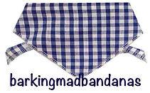 Gingham Check, Blue, Dog Clothing, Dog Coats, UK