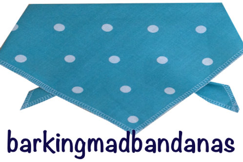Teal dog model, luxury dog bandanas, dog clothes, dog clothing, Dog Bandanas UK, Tie on Dog Bandanas, Dog Birthday Bandanas
