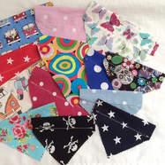Multi Pack Deals of Slide on the collar dog bandanas UK