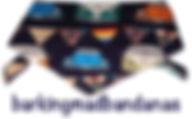 Blue Camper, VW Camper, Car Dog Bandana, Dog Scooter, UK Dog Clothing