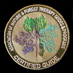 Association of Nature & Forest Therapy Guides Patch