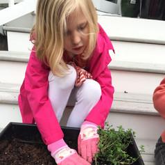 Planting a Sensory Garden.jpg