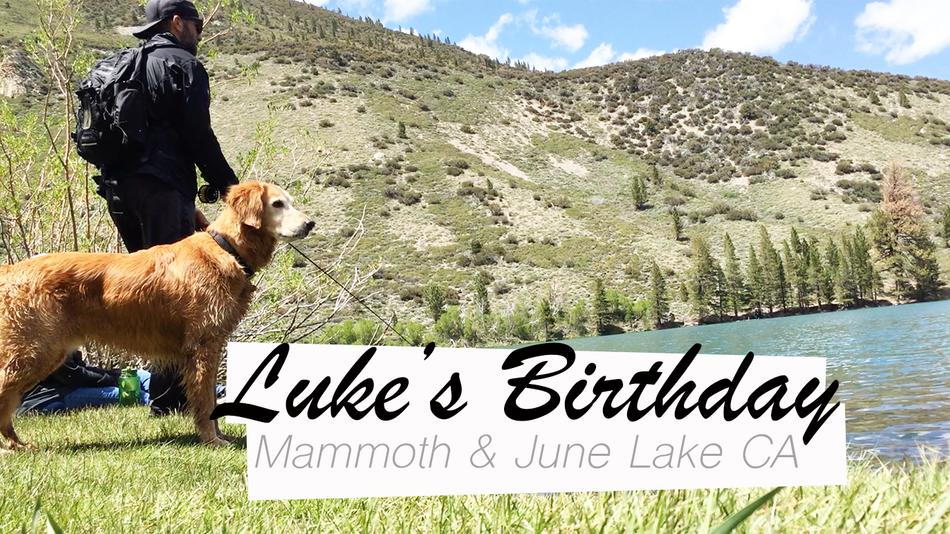 Luke's Birthday Mammoth California