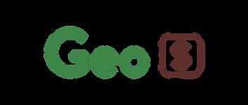 Geo S.png