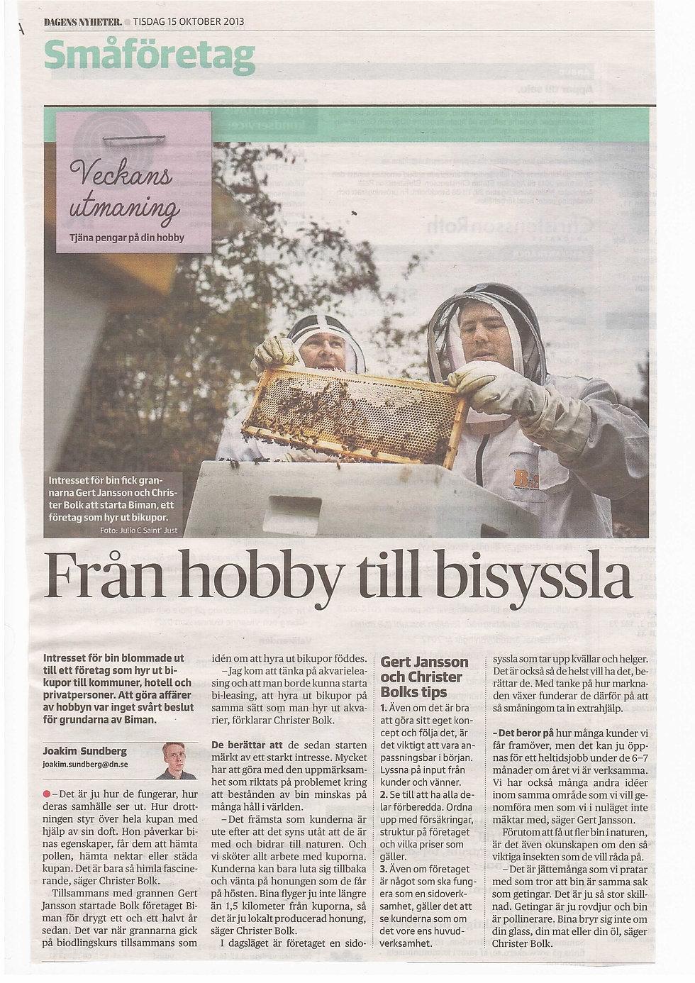 Artikel Dagens Nyheter 2013-10-15.jpg