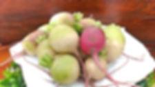 大阪のキナリケータリングサービスのメイン食の一つ紅心大根の画像