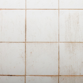 WHAT IS THAT PINK DISCOLORATION IN MY SHOWER?