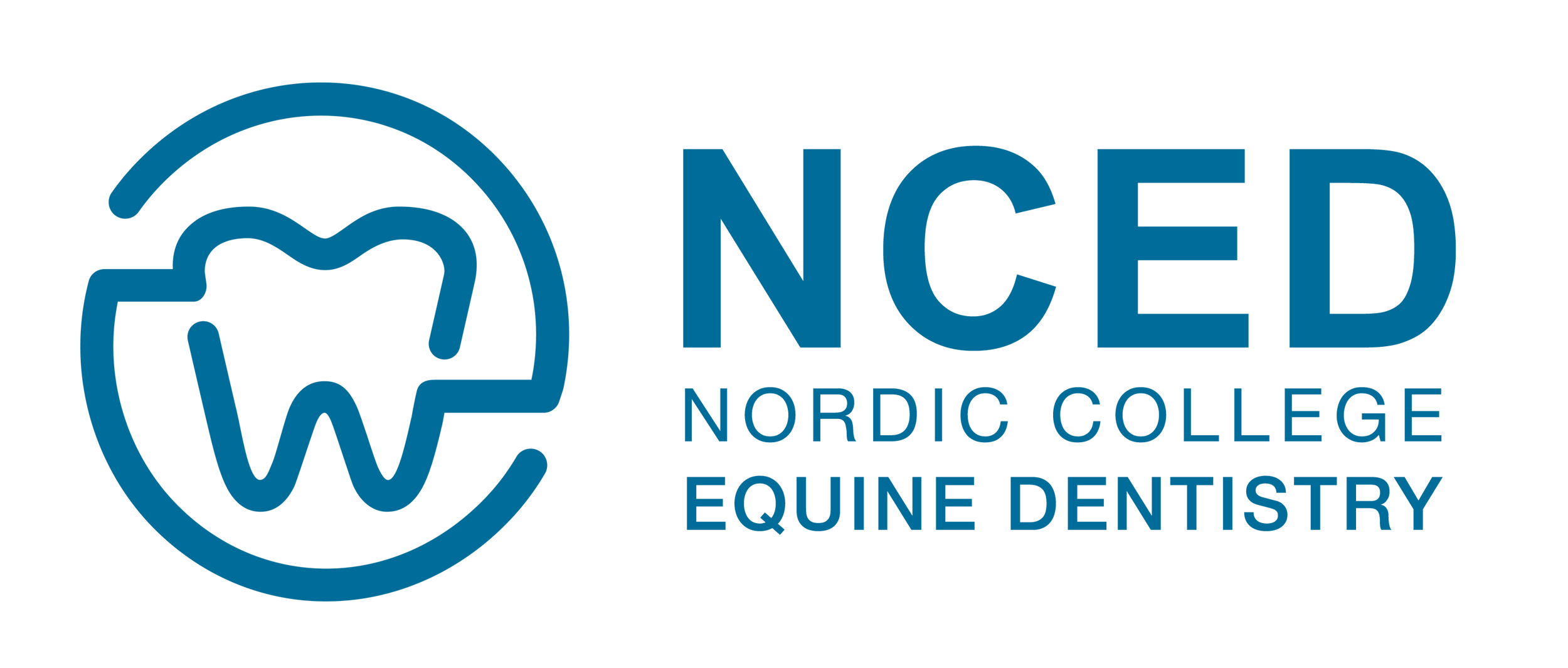 Equine Dentistry | NCED - Nordic College of Equine Dentistry