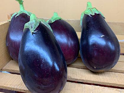 Med Eggplant OPT.jpg