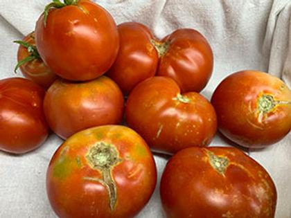 Hybrid Tomatoes OPT.jpg