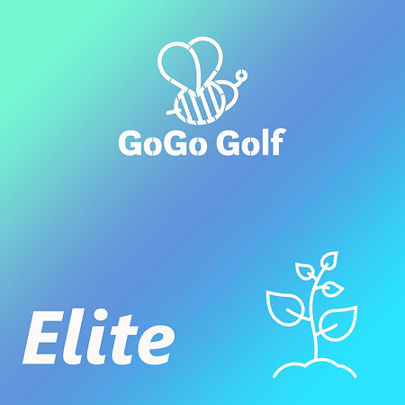 Golf Simulator   Golf Lesson   Golf Academy   Driving Range   GoGo Golf Indoor Golf Centre
